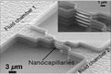ナノ・キャピラリー構造