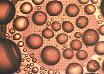 撥水膜の成膜