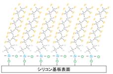 単分子膜成膜(FDTS※使用)